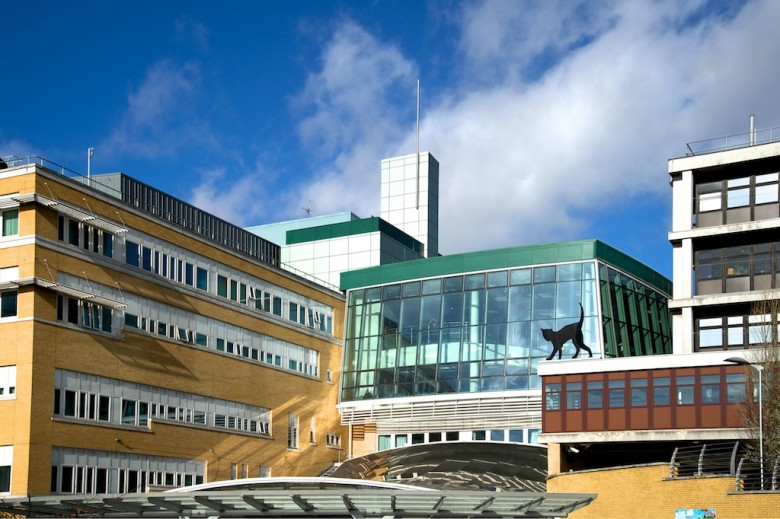 whittington hospital © John Batten Photography